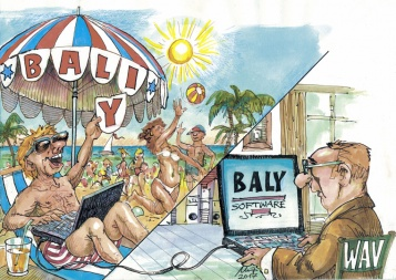 software-baly
